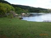 04 湖畔のキャンプDSC05712.JPG