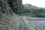 06DSC00073山道を進む(2).JPG