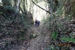09DSC00078山道を進む(3).JPG