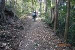 10DSC00080山道を進む(4).JPG