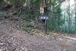 11DSC00082本宮山への登路.JPG