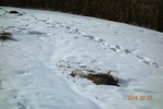 13DSC00232山頂台地の積雪UP・AC.jpg