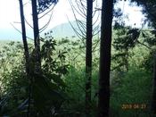 25 高崎山方面DSC05746.JPG