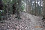 26DSC00110山道を進む(7).JPG