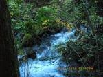 29IMGP6307鳴子川の渓流.JPG