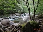 35奥岳川の清流DSC02076.JPG