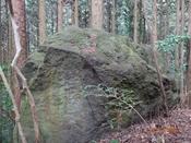 39 突峰への尾根の岩DSC05598.JPG