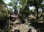 43.山道の眺めDSC02618.JPG
