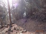 45 林道に降り着くDSC05390.JPG