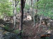 55 岩が多くなるDSC05965.JPG