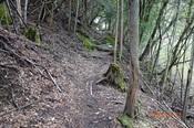 DSC00443・06山道を上る.JPG