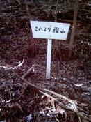0-049 樫山入口標.jpg