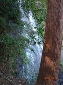 01 白糸の滝DSC05329.JPG