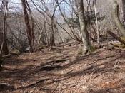 03. 南平台への山道(1)DSC03185.JPG