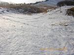 03.雪が深くなる.jpg
