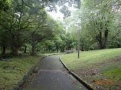 04. 南立石公園(1)・中道DSC02726.JPG