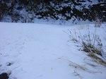 04路面の雪-9:30AM-21%.jpg