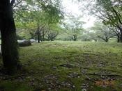 05. 南立石公園(2)DSC02727.JPG