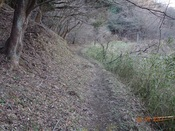 05. 紅葉谷の山道1DSC03732.JPG