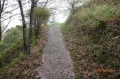 05DSC00391一の峰への山道.JPG