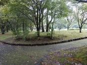 06. 南立石公園(3)DSC02728.JPG