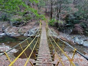 06.第1吊橋DSC01300.JPG