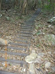 06擬似木の階段.jpg