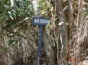 06標高1300m標DSC02033.JPG