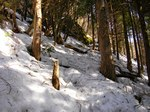 07雪の登山道-10:06AM-AC21%.jpg
