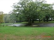 08. 南立石公園(5)DSC02733.JPG
