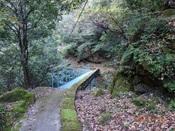 09.青い橋を渡るDSC01096.JPG