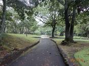 10. 南立石公園(7)DSC02735.JPG