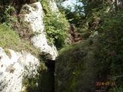 12.岩間の登山道DSC02447.JPG