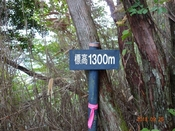 14 1300m標DSC05167.JPG