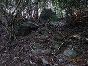 15 目印岩DSC03646.JPG