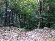 16.林道に出るDSC01106.JPG