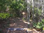 16フラットな稜線歩き.jpg