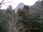 17林道から尺間山21%.jpg