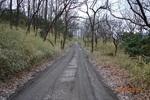 18DSC00244均された林道.JPG