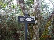 19 1600m標DSC05172.JPG