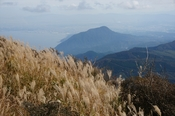 21 高崎山方面DSC01219.JPG