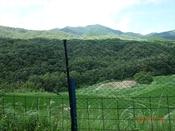 22. 黒岩・雨乞岳(左端)方面DSC05103.JPG