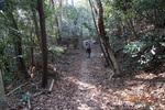 24DSC00104自然林.JPG