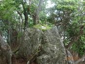 25.前笠松山頂DSC02273.JPG