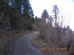 26IMGP6722曲折する林道.JPG