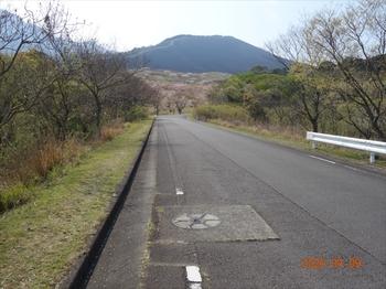 (01) 野焼き5日後の大平山DSC07383.JPG