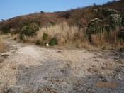 (04) 塚原越へは左DSC04773.JPG