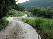 (10) 堰堤への車道DSC07705.JPG