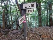 (10) 滝つぼ分岐DSC06406.JPG