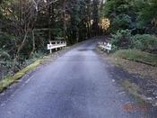 (11) また橋が現れたDSC06539.JPG